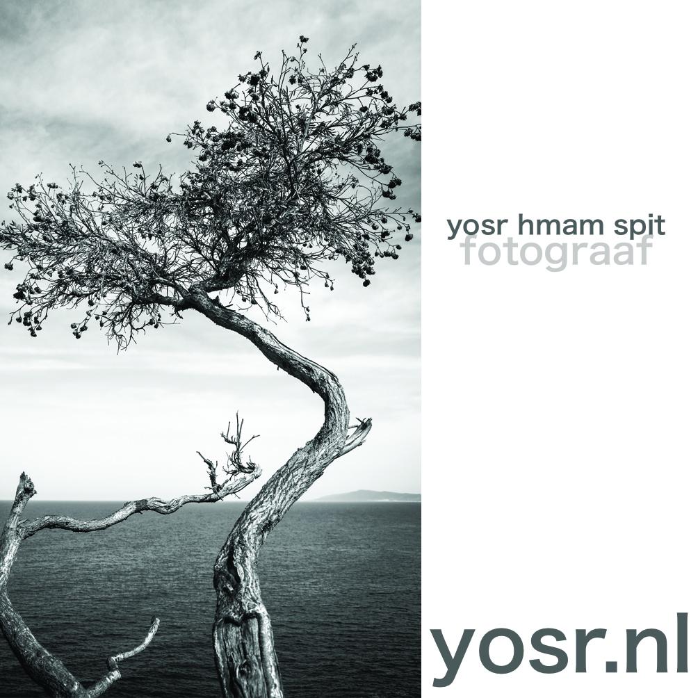 yosr.nl-tabarka